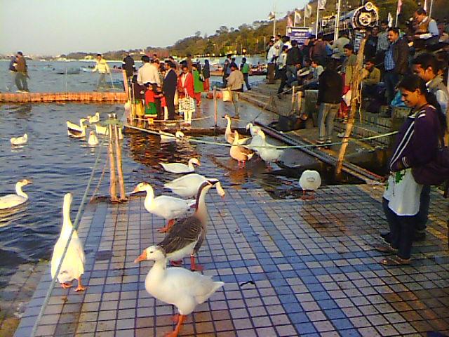 IBhopal Lakes Fstival