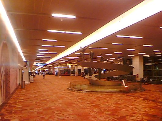 Indira Gandhi Airport Carpet