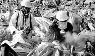 Workers repackaging the toxic waste atthe Union Carbide factory in Bhopal.— Photo: A.M. Faruqui