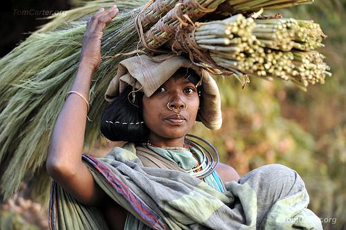 Dongria Tribswoman